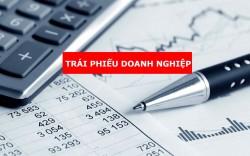 Có phải lời giải tối ưu cho thị trường vốn?